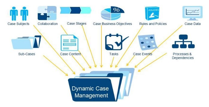 Dynamic Case Management.jpg